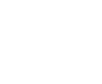New Zealand Maori Arts & Crafts Institute Logo White